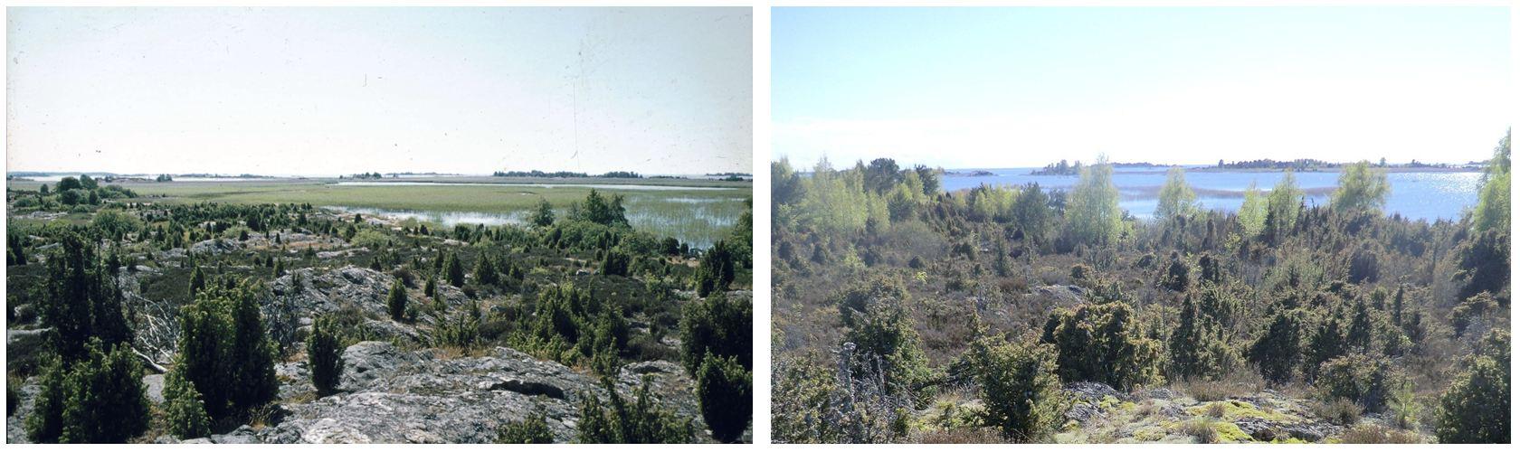 Ärnön 1975 och 2014