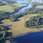 Strandängar i Klarälvsdeltat fotograferade från luften