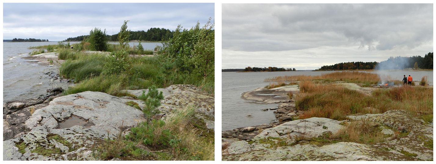 Fågelkskäret Rammholmsbottnen före och efter röjning