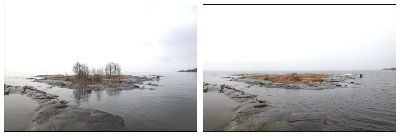 """Fågelskäret 50107 """"Mövikens västskär"""" utanför Hammarö före och efter röjning."""