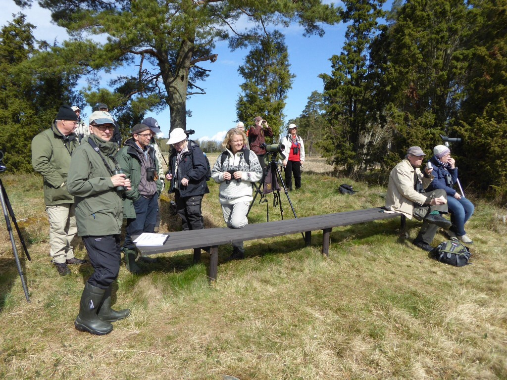 Deltagare på Kilsvikens dag