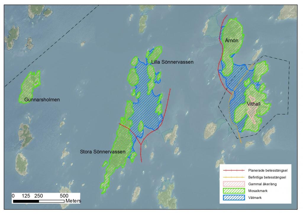 Karta över öar som ska öppnas upp och betas i projektet. Vithall har restaurerats under perioden 2011-2014
