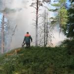 Bilder från bränningen på Harvelsön