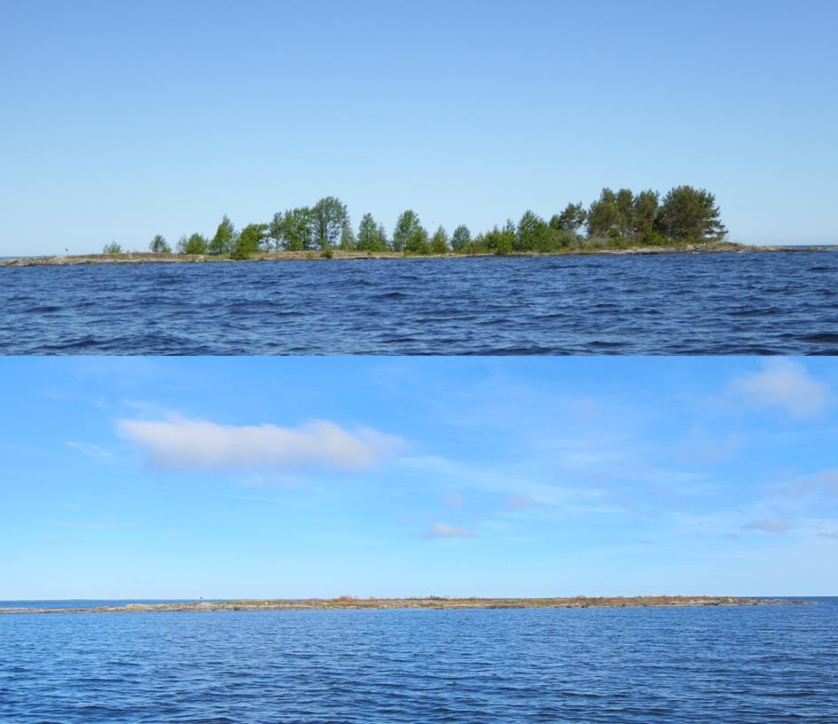 Djuröarna - id 80301