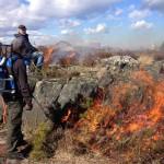 Antändningen av ljung- och gräsmarkerna har skett med gasolbrännare