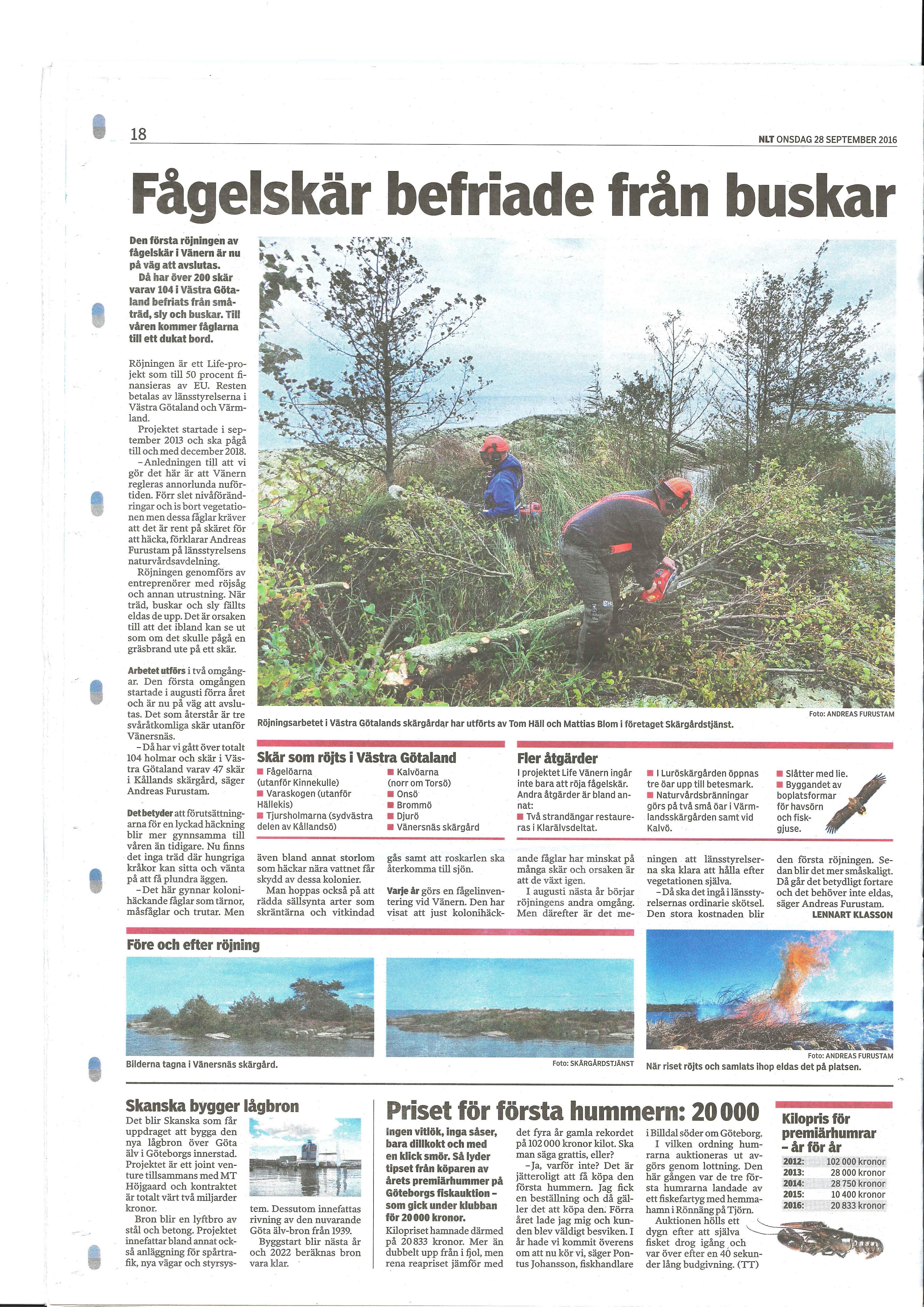 Artikel i Nya Lidköpings-Tidningen 2016-09-28