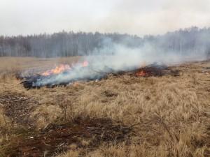 Bränning av rishögar och fjolårsgräs.